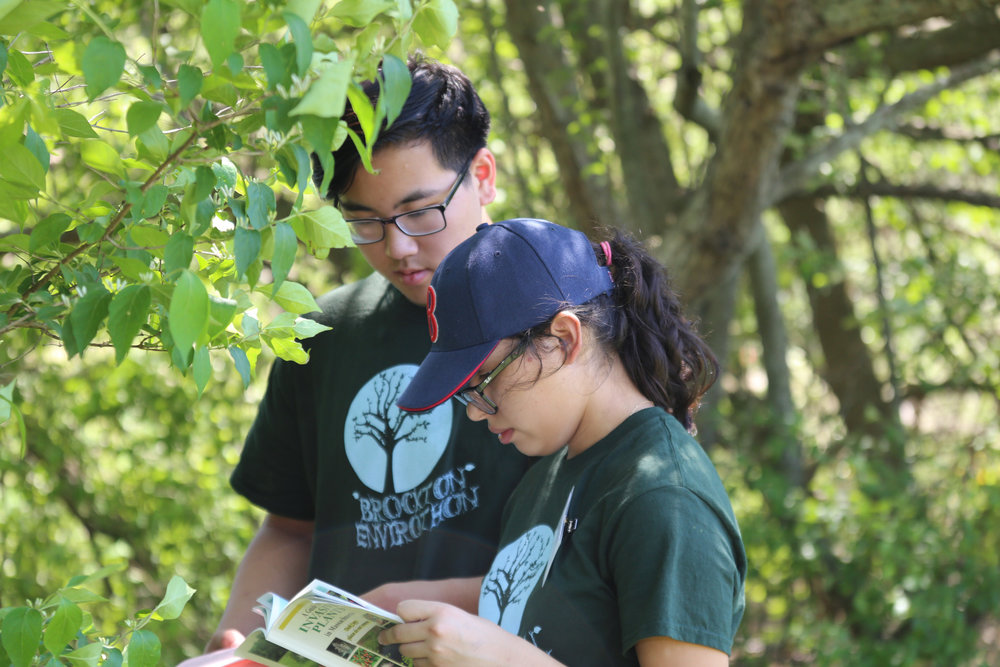 The Brockton team tests their knowledge at the Forests field test, one of four tests at the Massachusetts Envirothon competition.