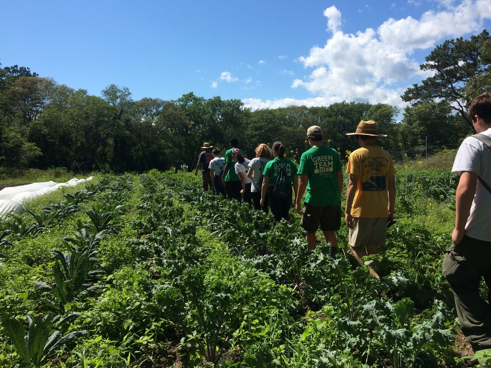 Day Six: Campout cleanup and organic farming at Bay End Farm/Old Field Preserve, Bourne