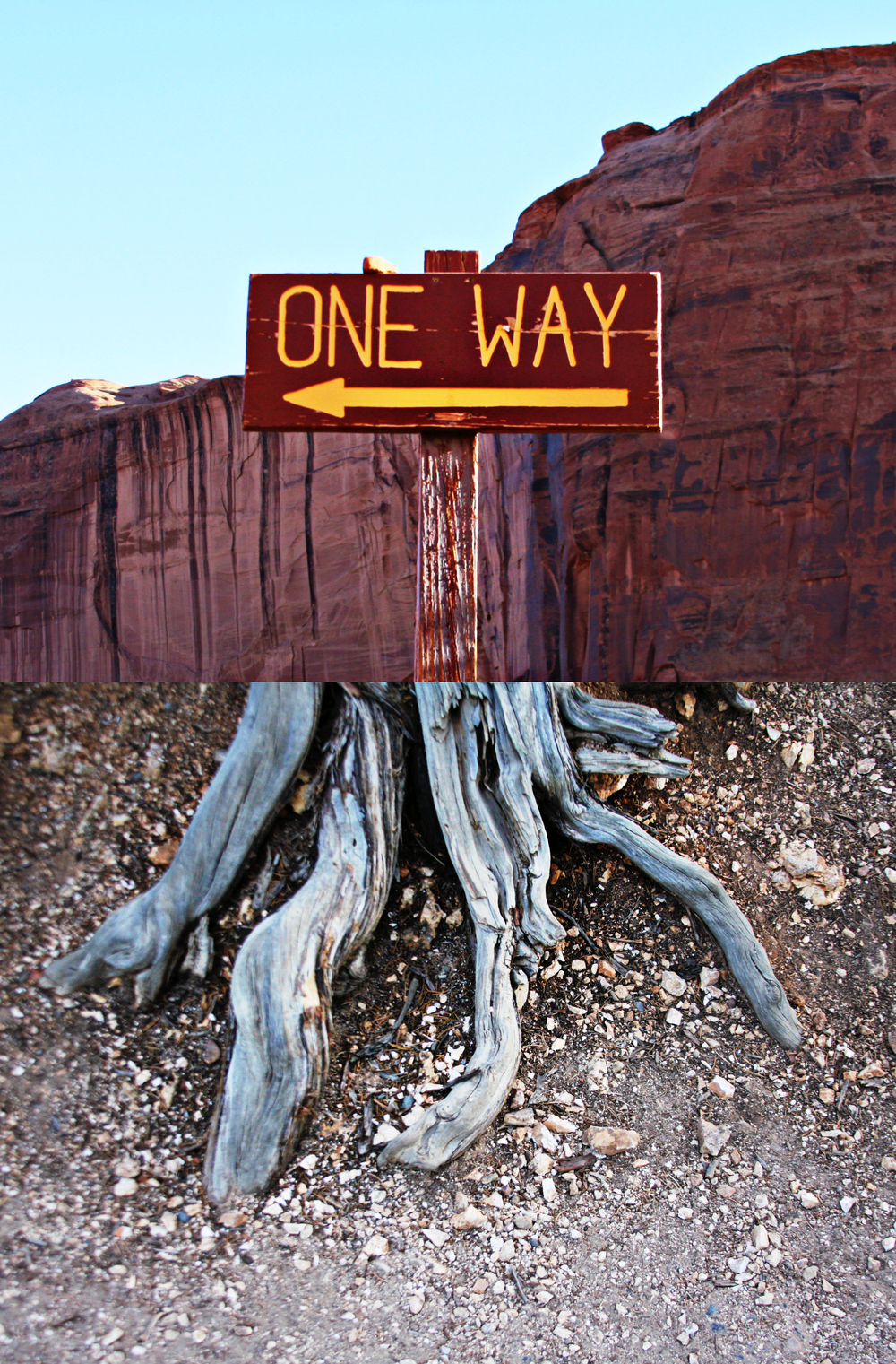 Mattie_Kannard_One_Way_Arizona_2015.jpg
