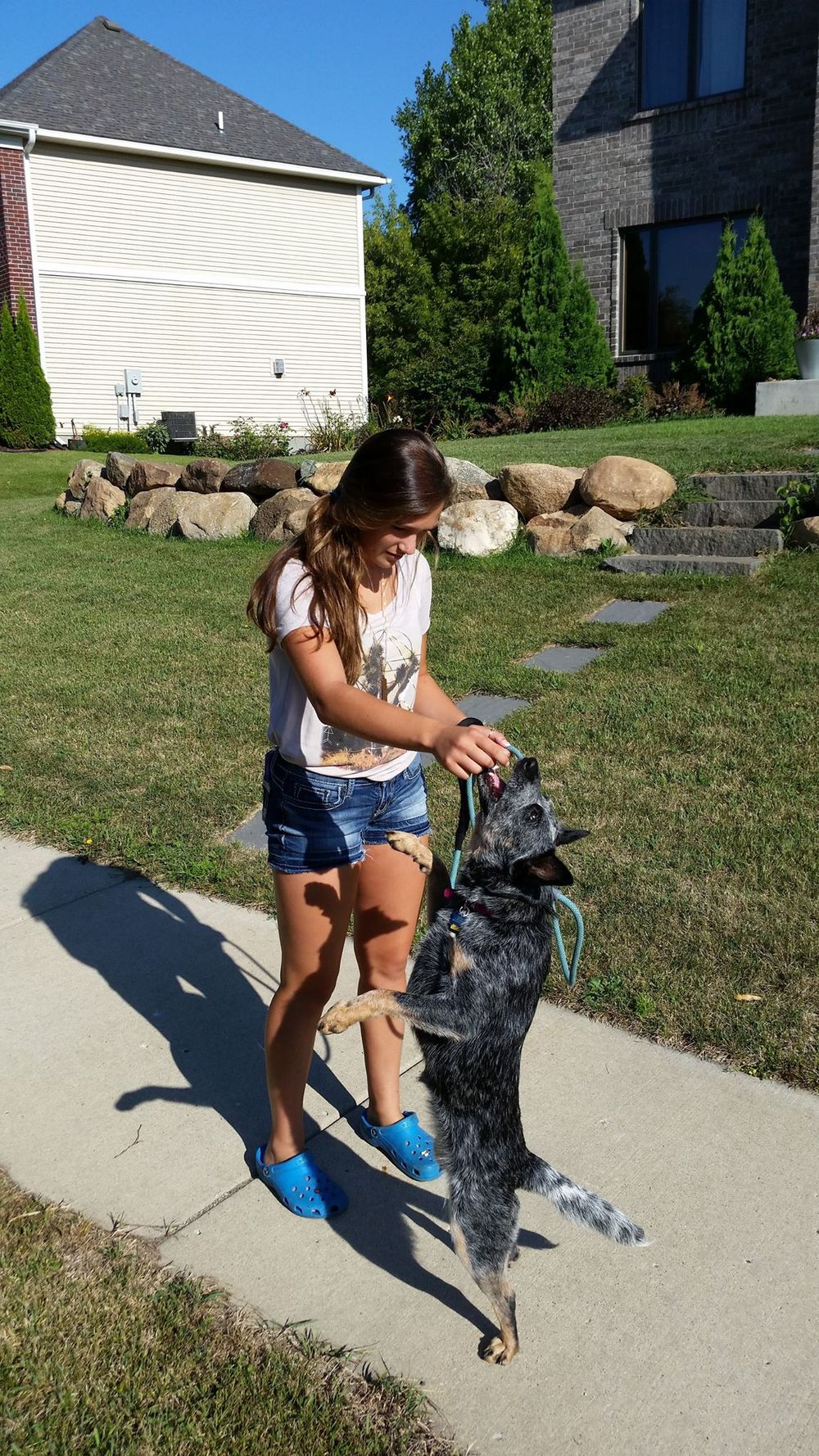 Lauren & Kiva, The Austrialian Cattle Dog