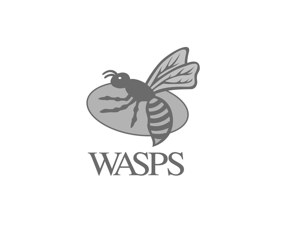 Wasps RFC BW.jpg