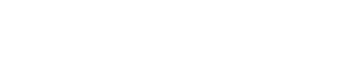 Buffalo Nickel Antiques