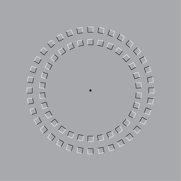 """""""Pinna Illusion"""""""