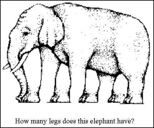 """Impossible Elephant"""