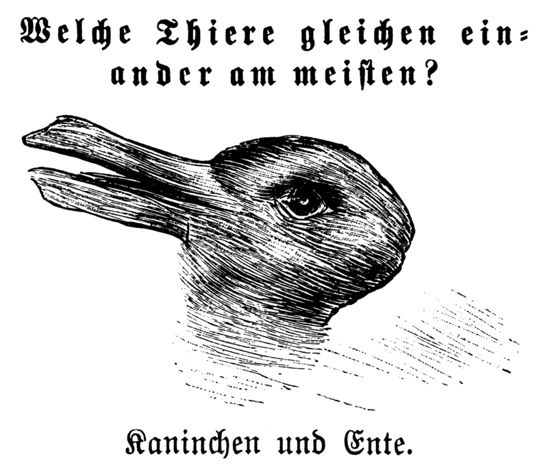 """Rabbit-Duck Illusion"""