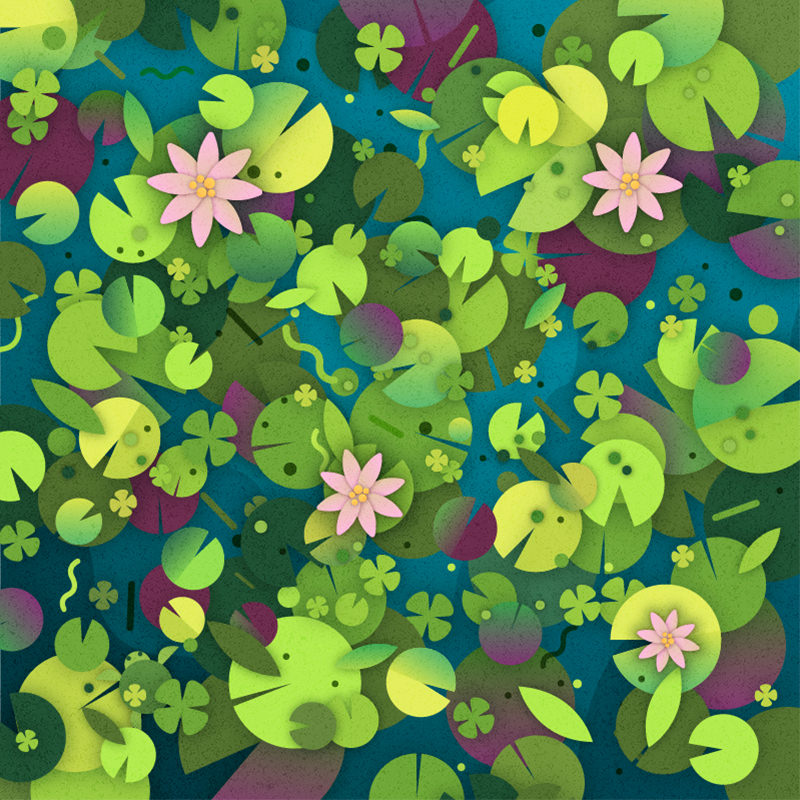 Can you find the turtle hidden among the water lilies?  Source:  Lenstore.co.uk