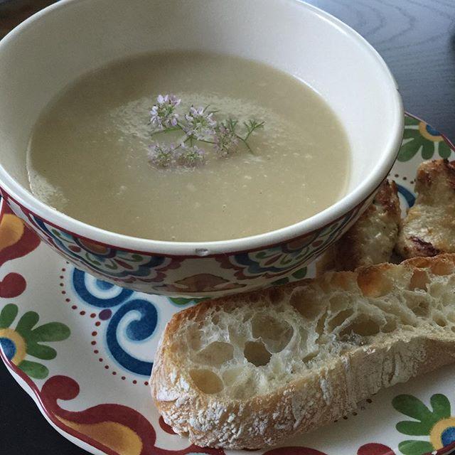Parsnip soup with fresh parsnips. #farmfresh