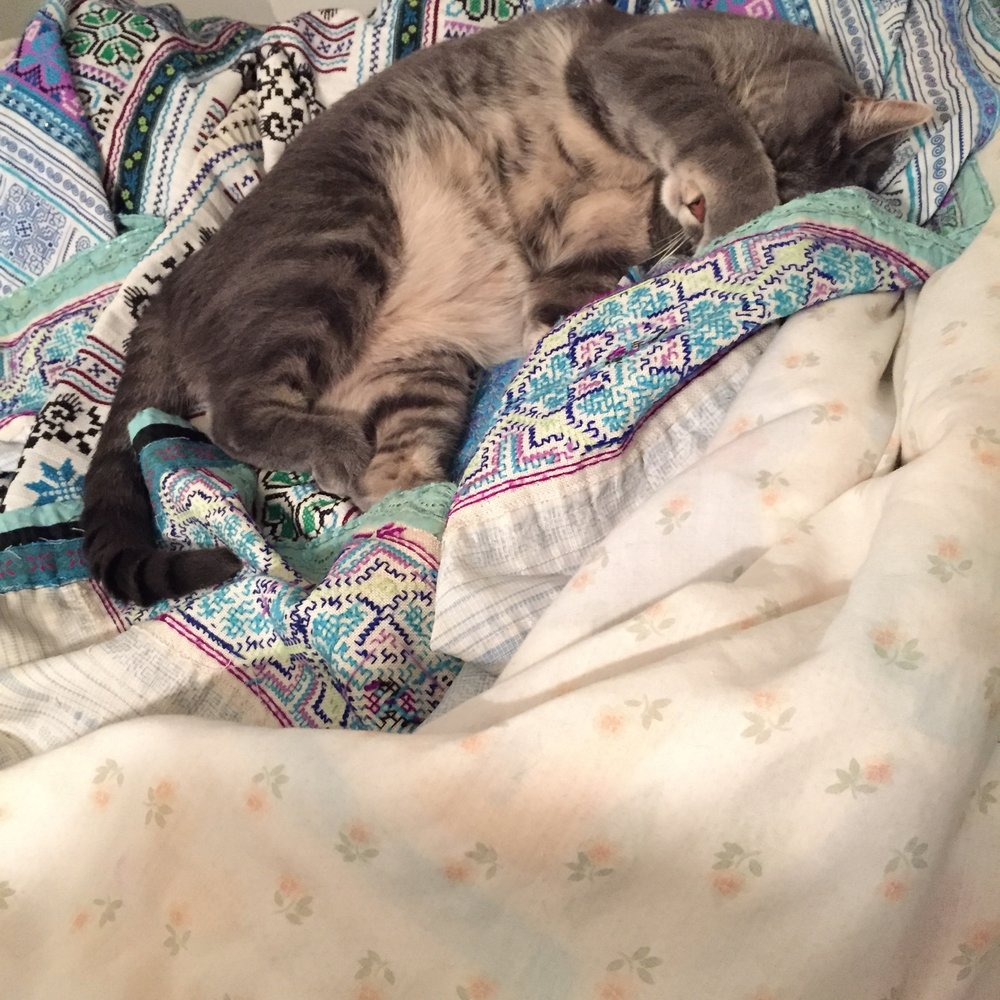 Shiva sleeping