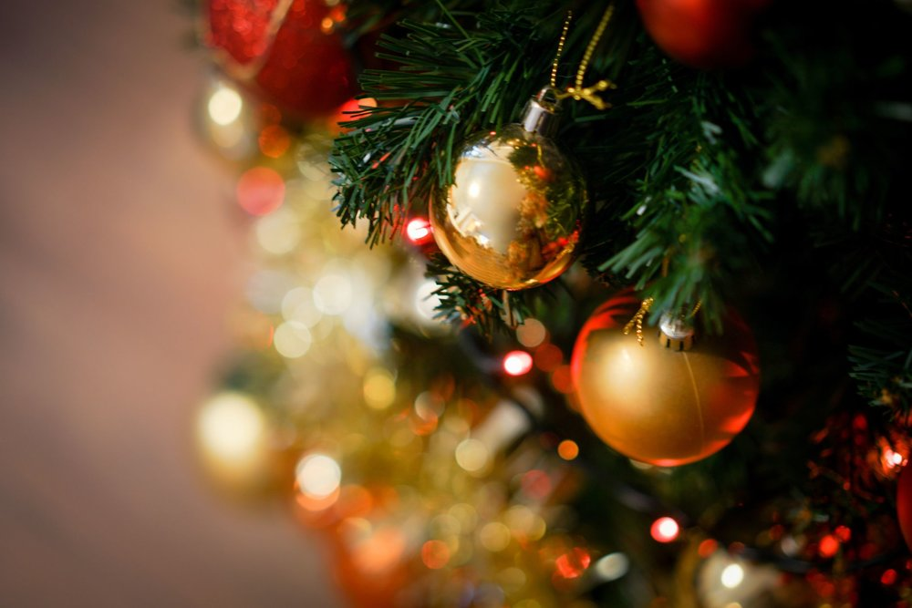 shiny-christmas-red-ball-hanging-on-pine-branches-1531402558.jpg