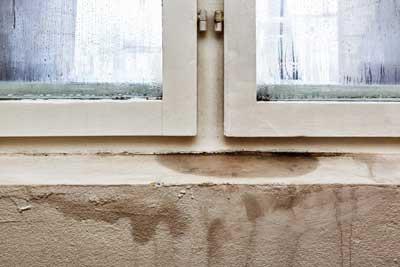 ways-to-fix-damaging-basement-moisture-farnum-insulators.jpg