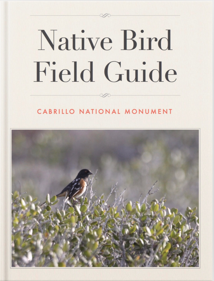 Native Bird iBook Title Page.JPG