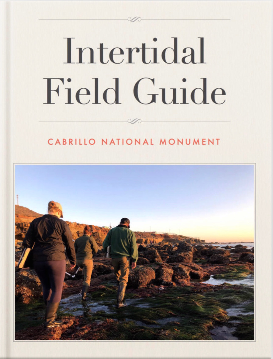 Intertidal iBook Title Page.JPG