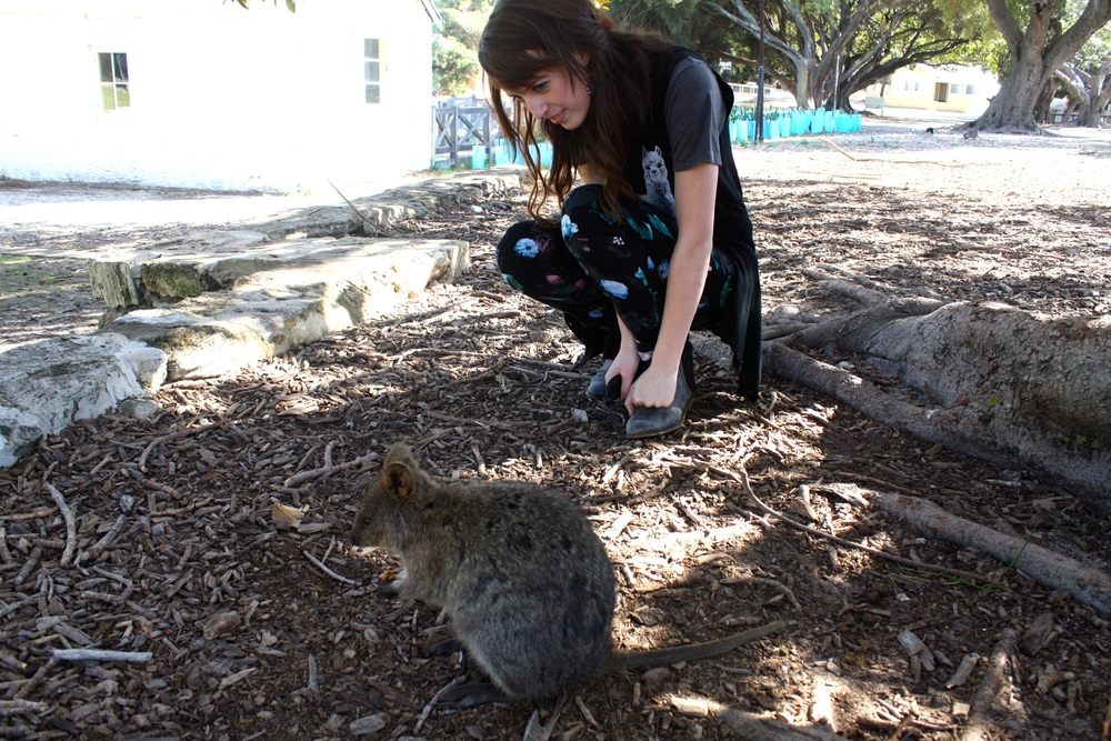 Pictured with a quokka in Western Australia, July 2015