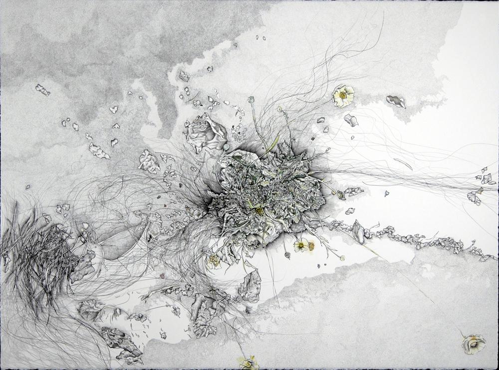 "Satellite 1: wildflowers/sand, drawing, 22X 30"", 2008."