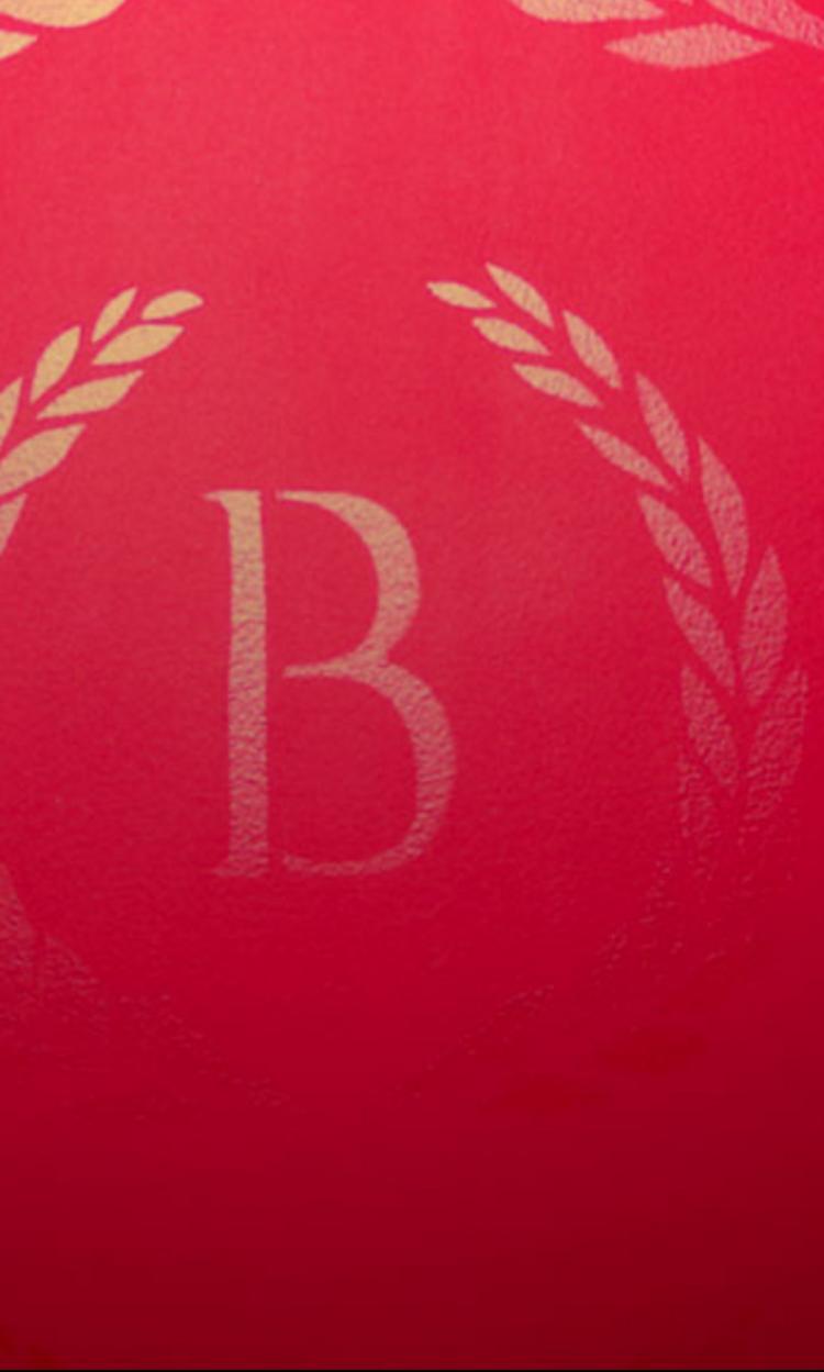 bonaparte — the popal group