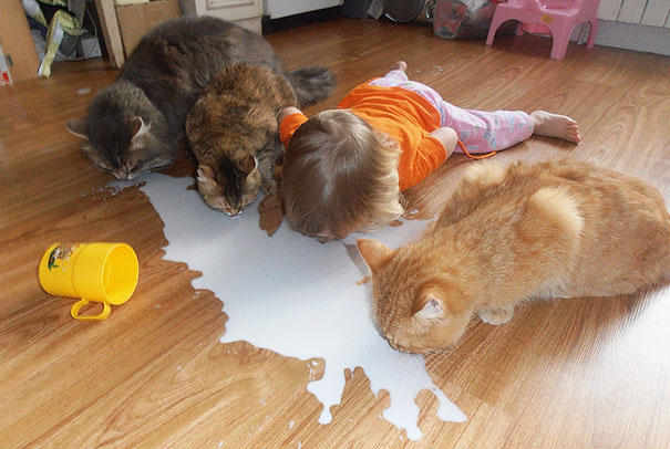 kids-with-cats-47__605.jpg