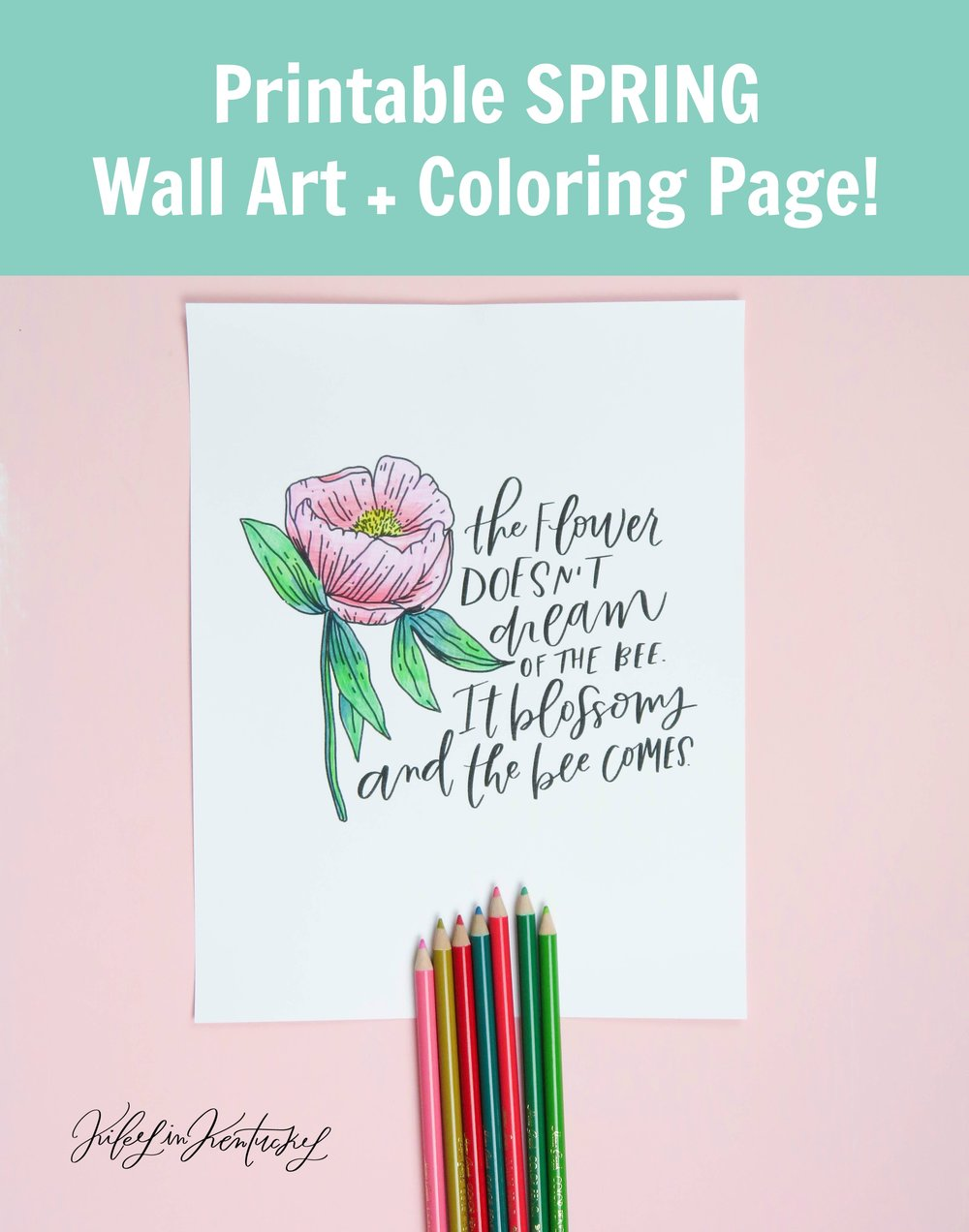 Printable Spring Wall Art and Coloring Page by Kiley in Kentucky.jpg