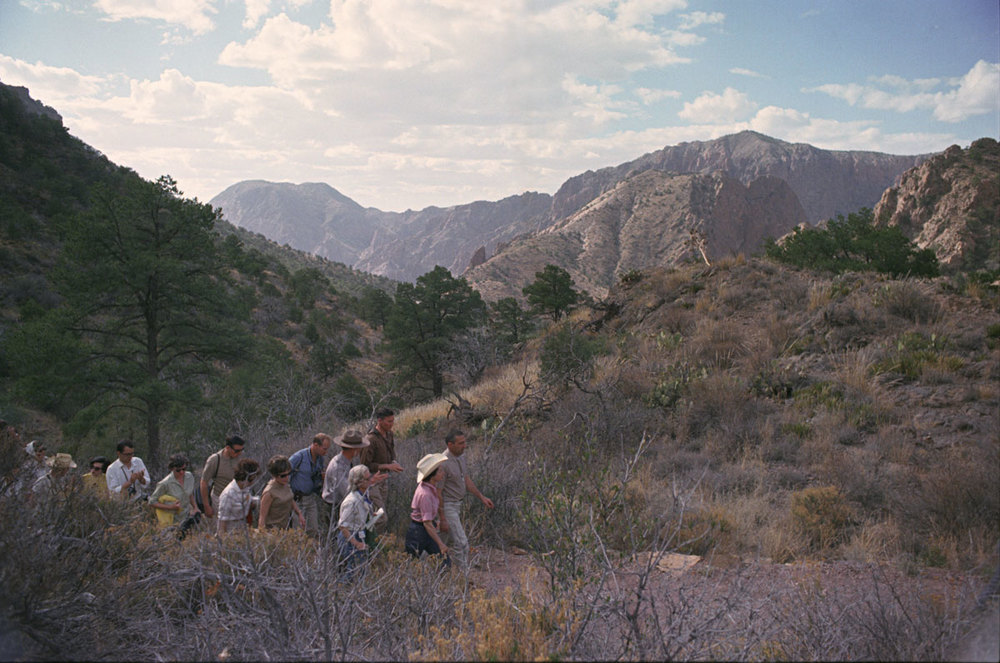 Lady Bird Johnson hikes the Lost Mine Trail with an entourage in Big Bend National Park in 1966. LBJ Library photo by Robert Knudsen.