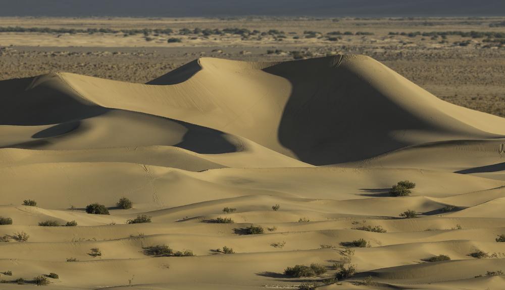 Mesquite Flat Dunes - Death Valley