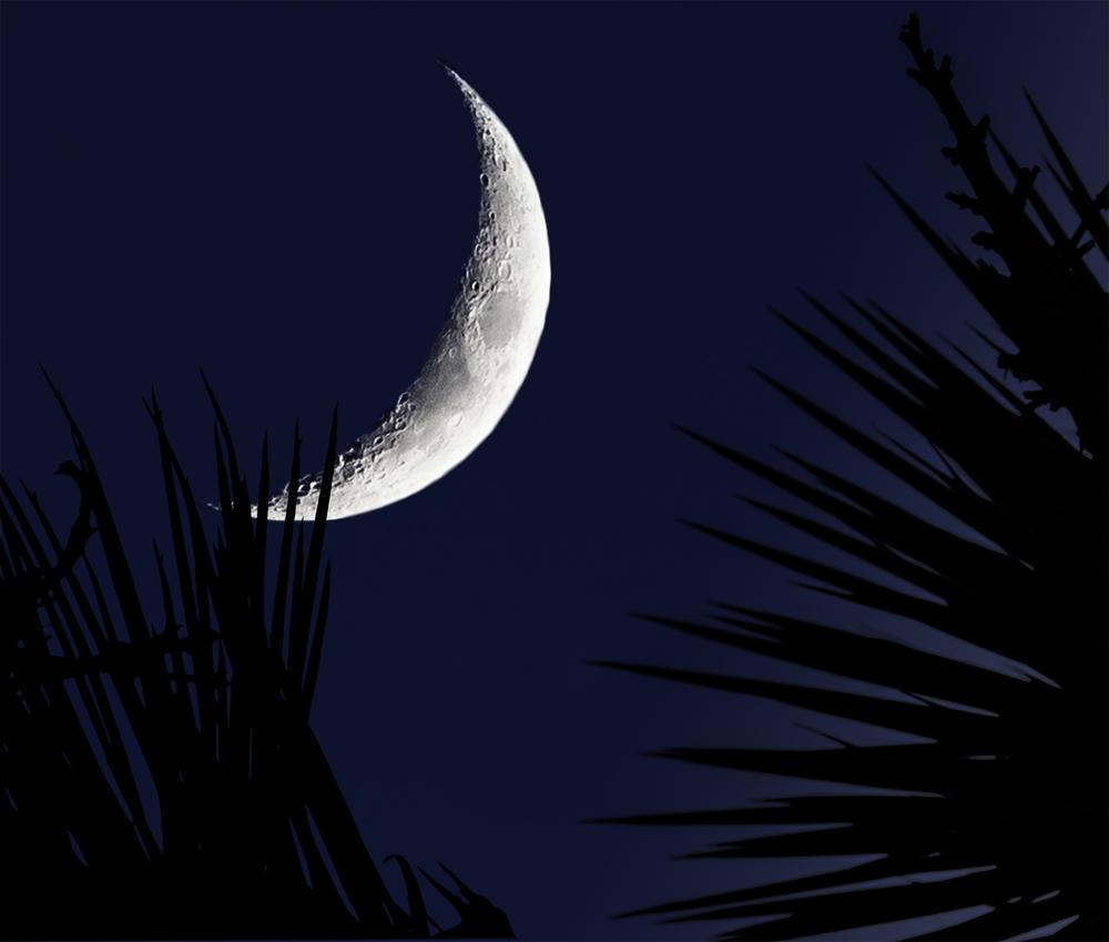 Moon 001 +.jpg