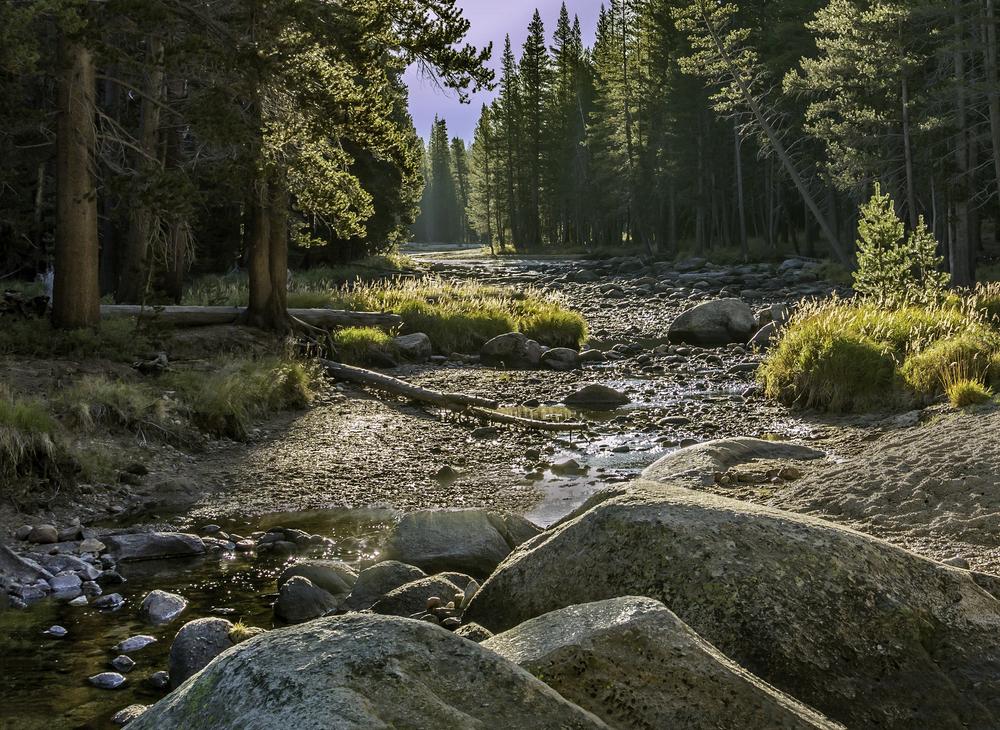 Yosemite 9-25-14 216 revised max.jpg