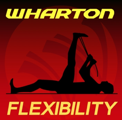 The Whartons Flexibility App is a free  iPhone App  that provides an excellent introduction to the Wharton Flexibility Program