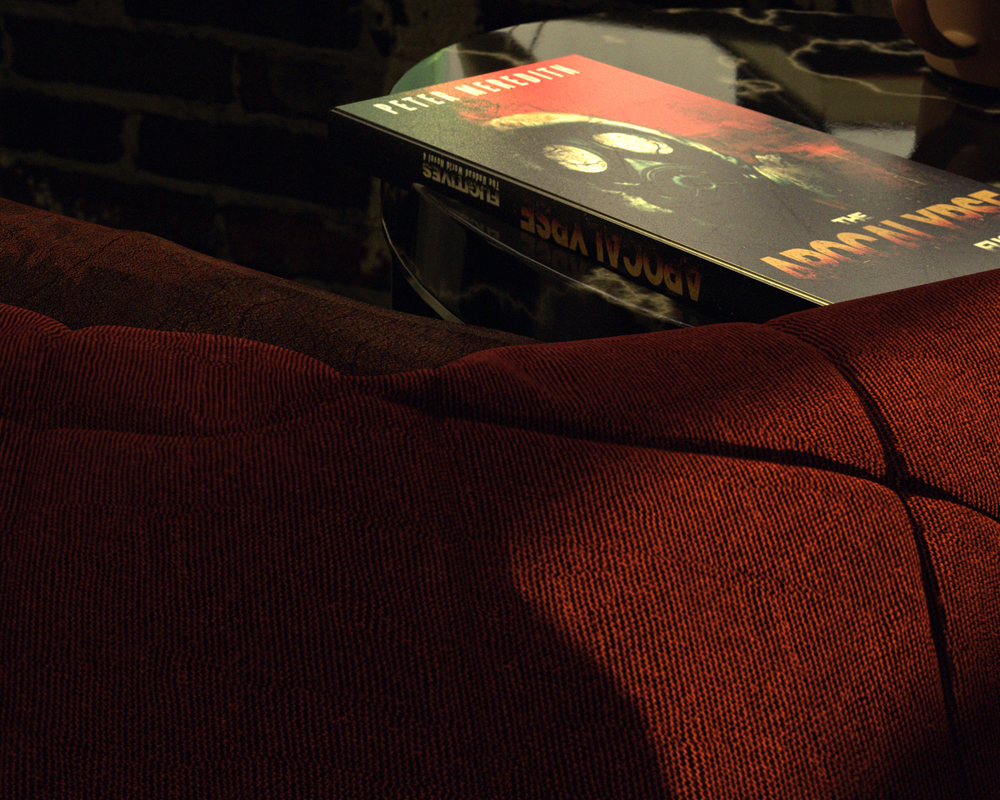 Close-up of pillow and a book from one of my favorite series