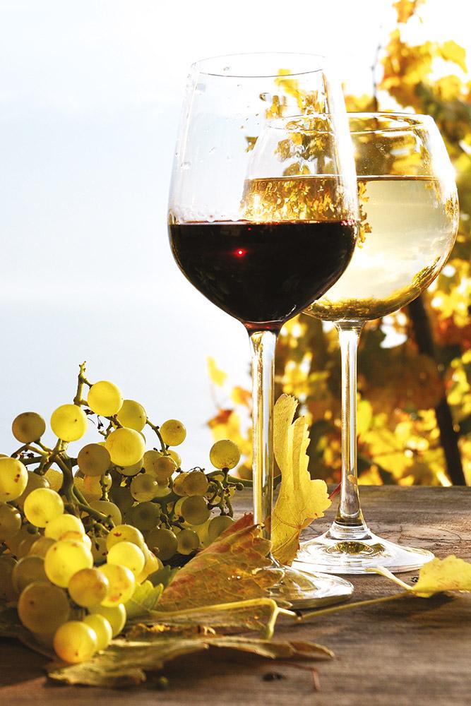 vini-bianchi-e-rossi-vert.jpg