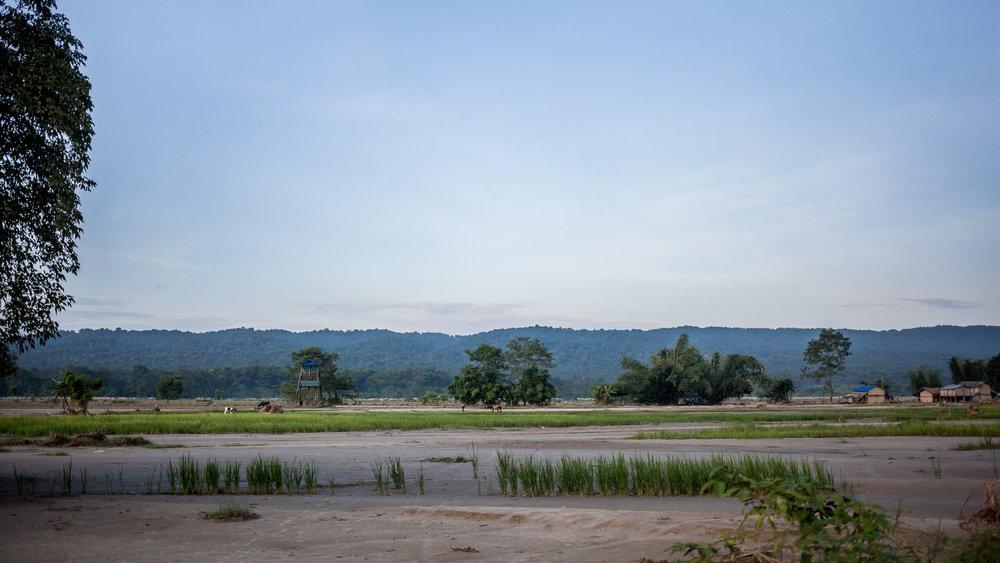 Groote delen van de akkers zijn verwoest en planten zijn weggespoeld.