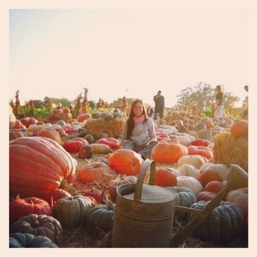 Pumpkin Market in Sonoma, California