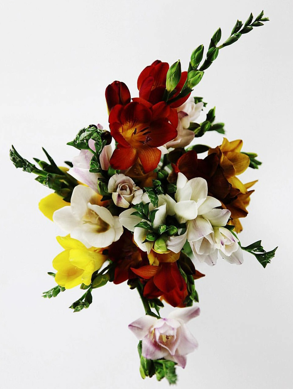 The bouqs flower arrangements.jpg