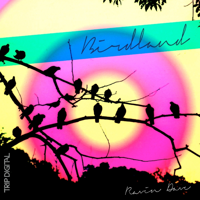 Ravin Dave - Birdland