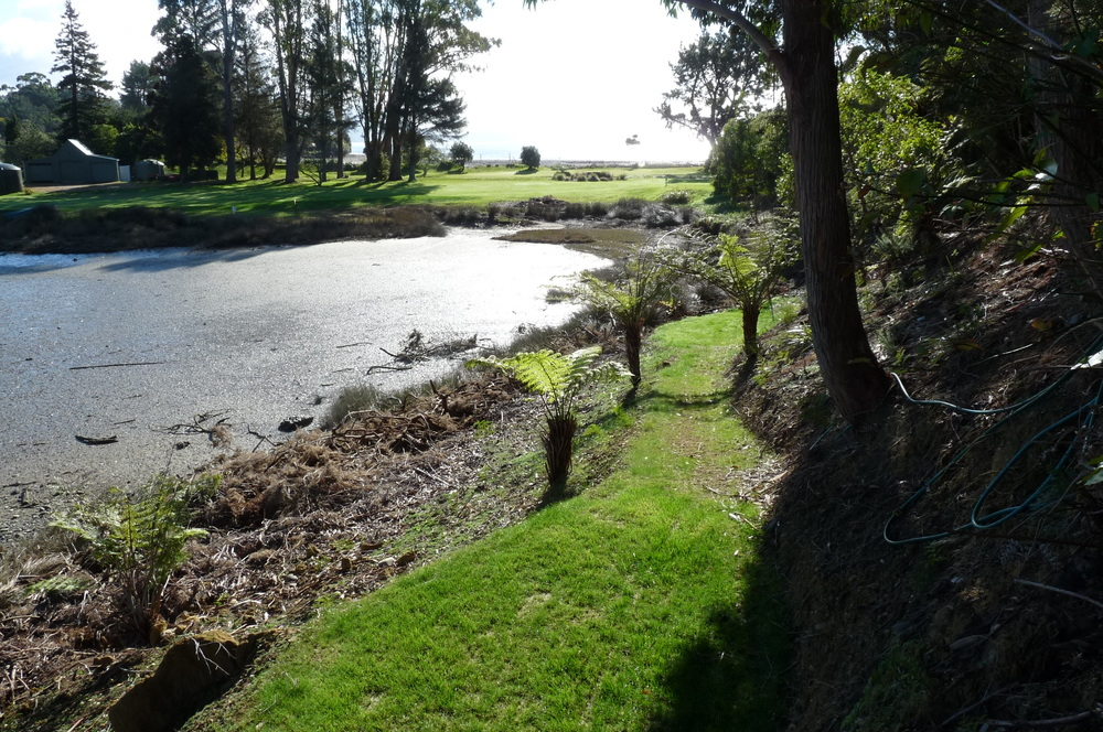 View from behind the tee.jpg