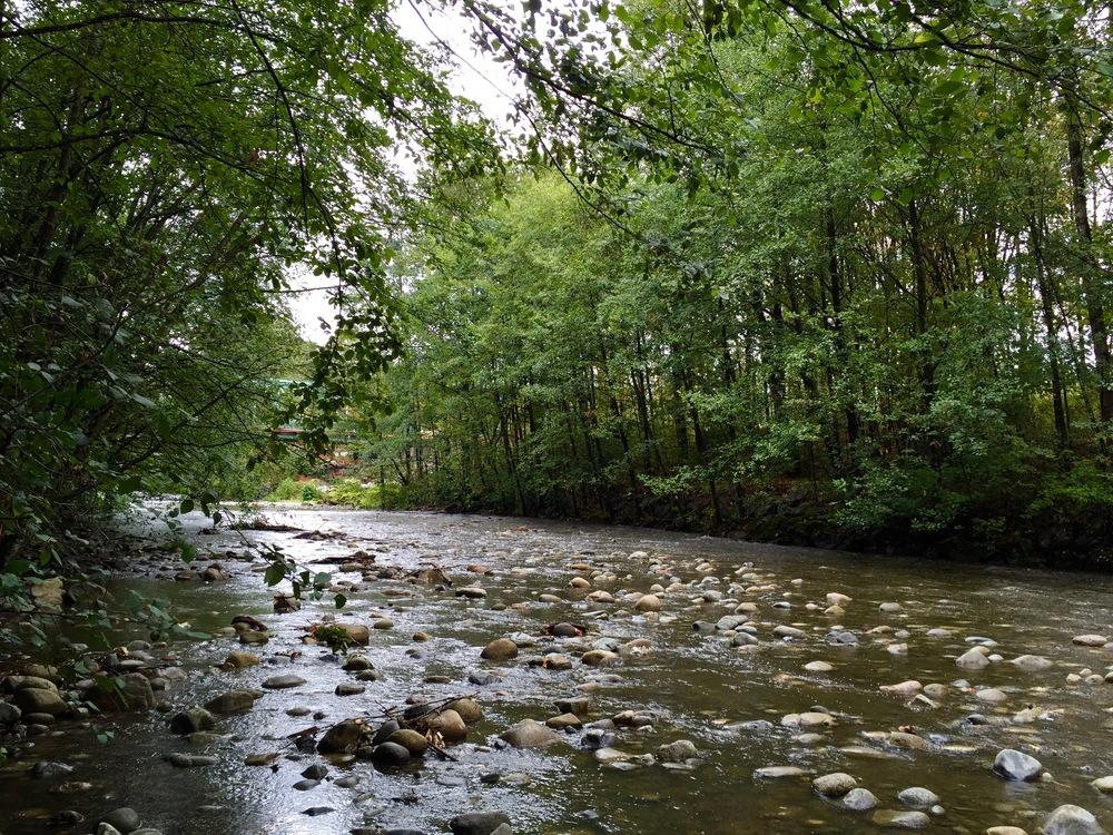 NV river.jpg