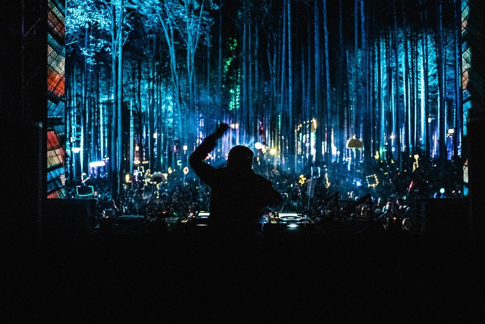 Electric Forest weekend 1.jpg
