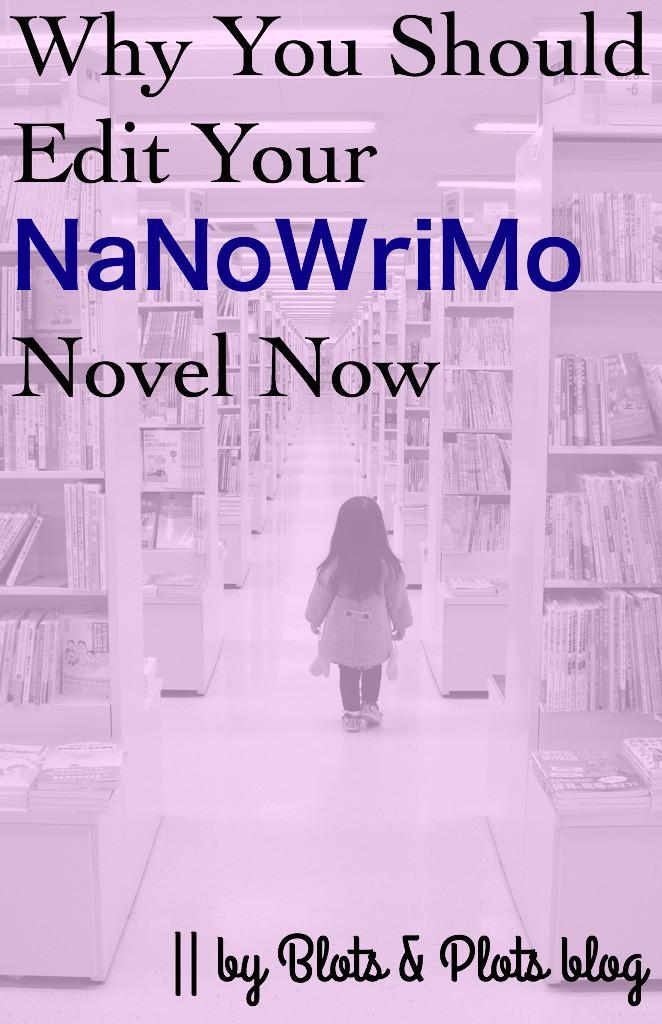 NaNoWriMoEdit