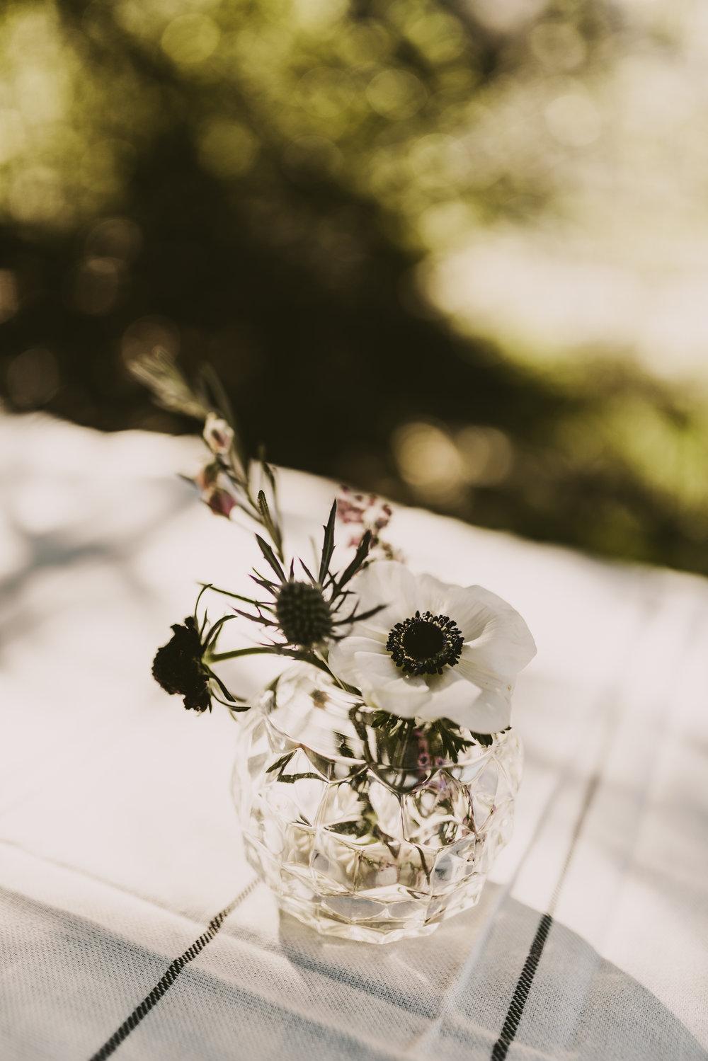 Isaiah+TaylorPhotography-Dan+MeghanElopement-140.jpg