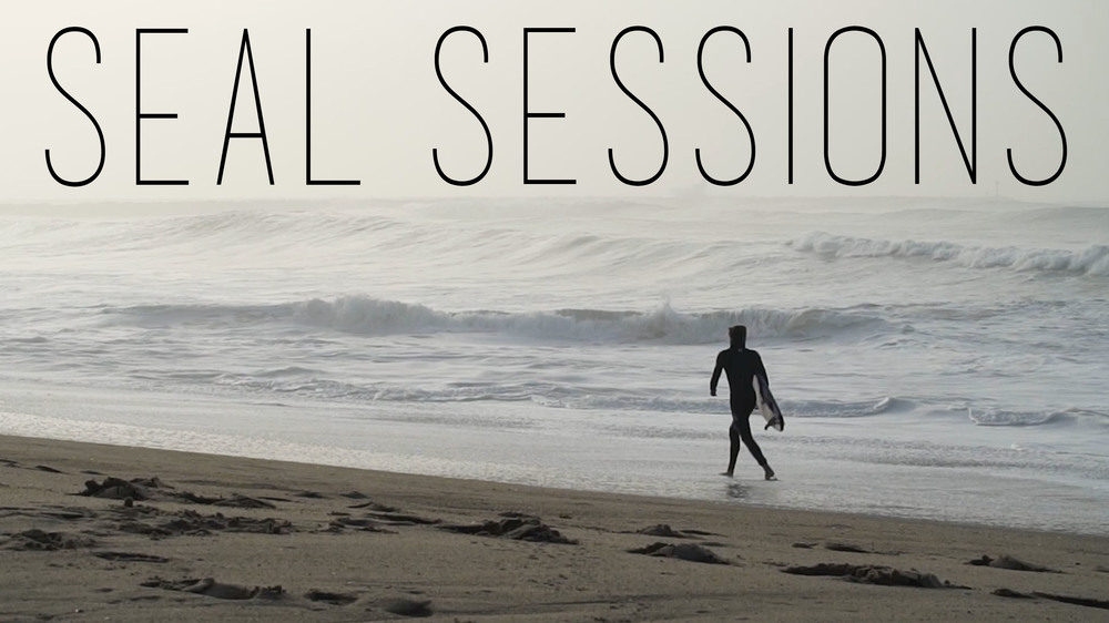 Seal Sessions / 2016
