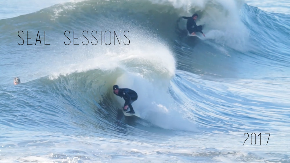 Seal sessions pt 2 / 2017
