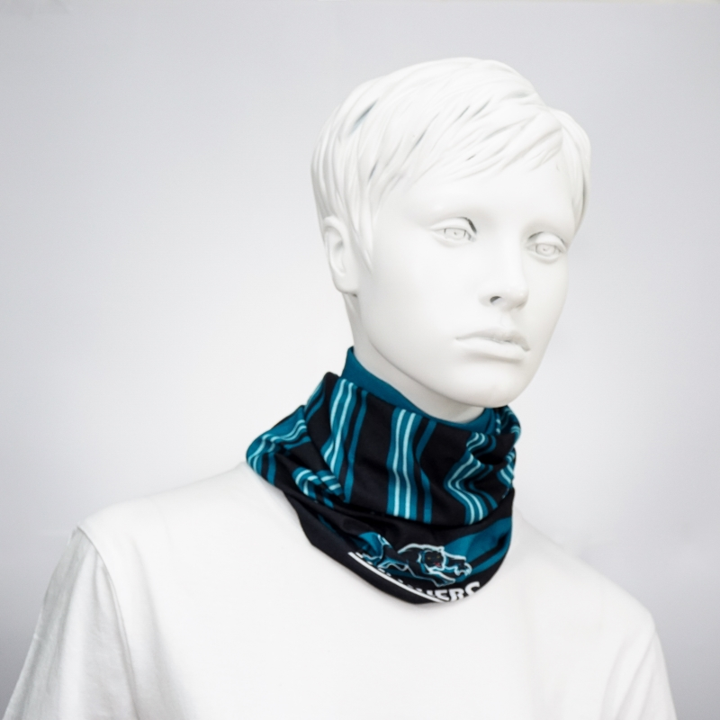 Panthers_NeckScarf_SC.jpg