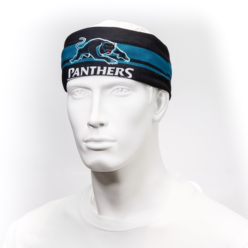 Panthers_HeadBand2_SC.jpg