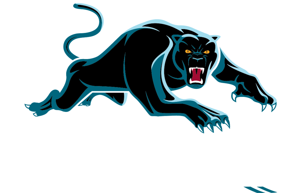 Penrith Panthers Tube Bandana