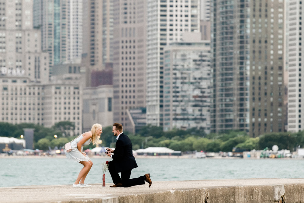 Skyline proposal at North Avenue Beach in Chicaco, Illinois