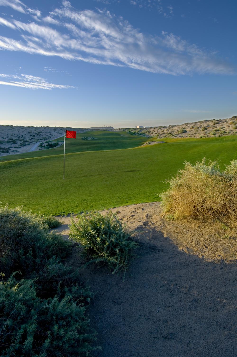 las-palomas-golf