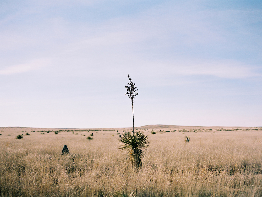 marfa_texas_film_travel_photography_23.jpg