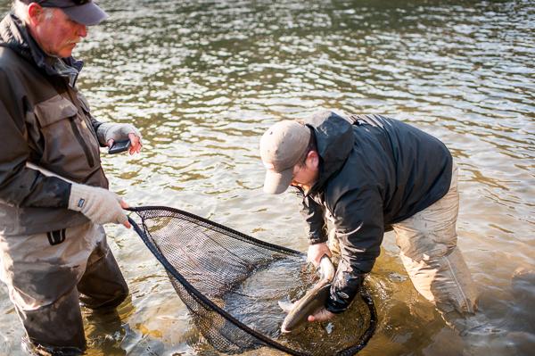 bogie_fishing_033.jpg