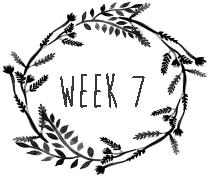 week7.png