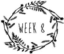 week8.png