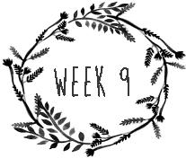 week9.png
