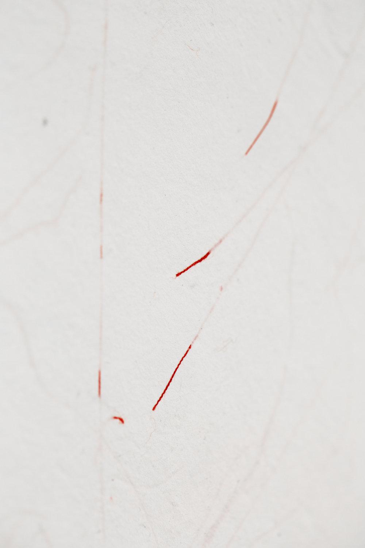 paper bleeding.jpg